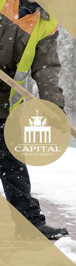 teaser-capital-infradienst-winterdienst